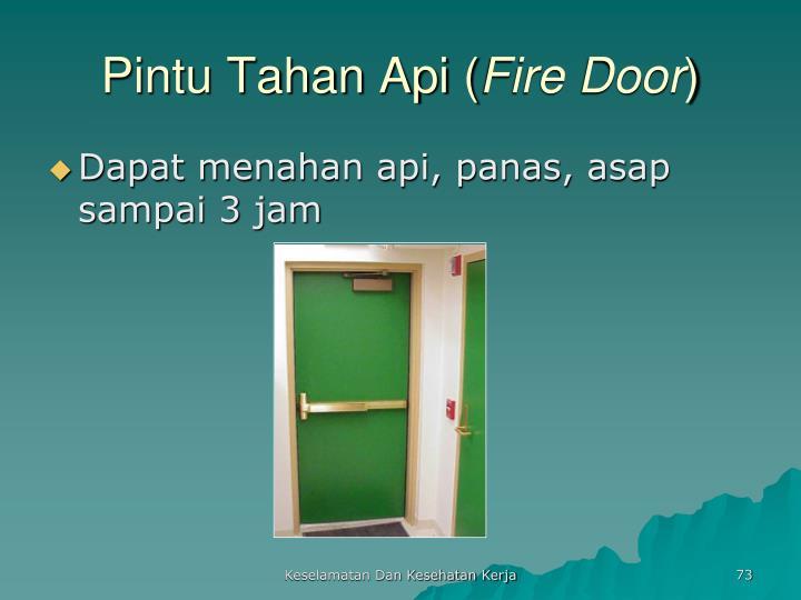Pintu Tahan Api (