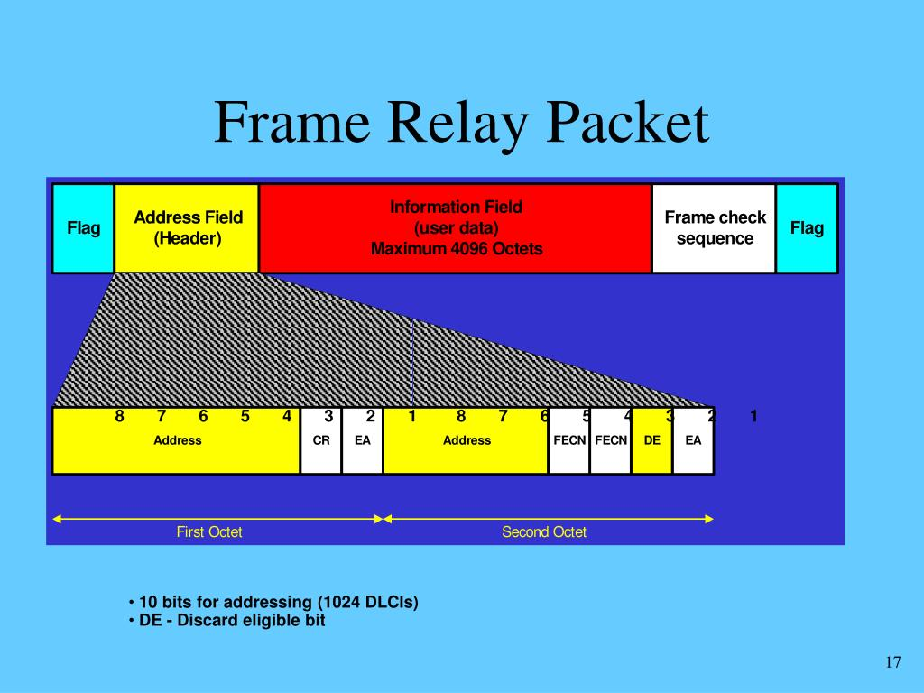 Frame Relay Packet
