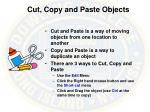 cut copy and paste objects