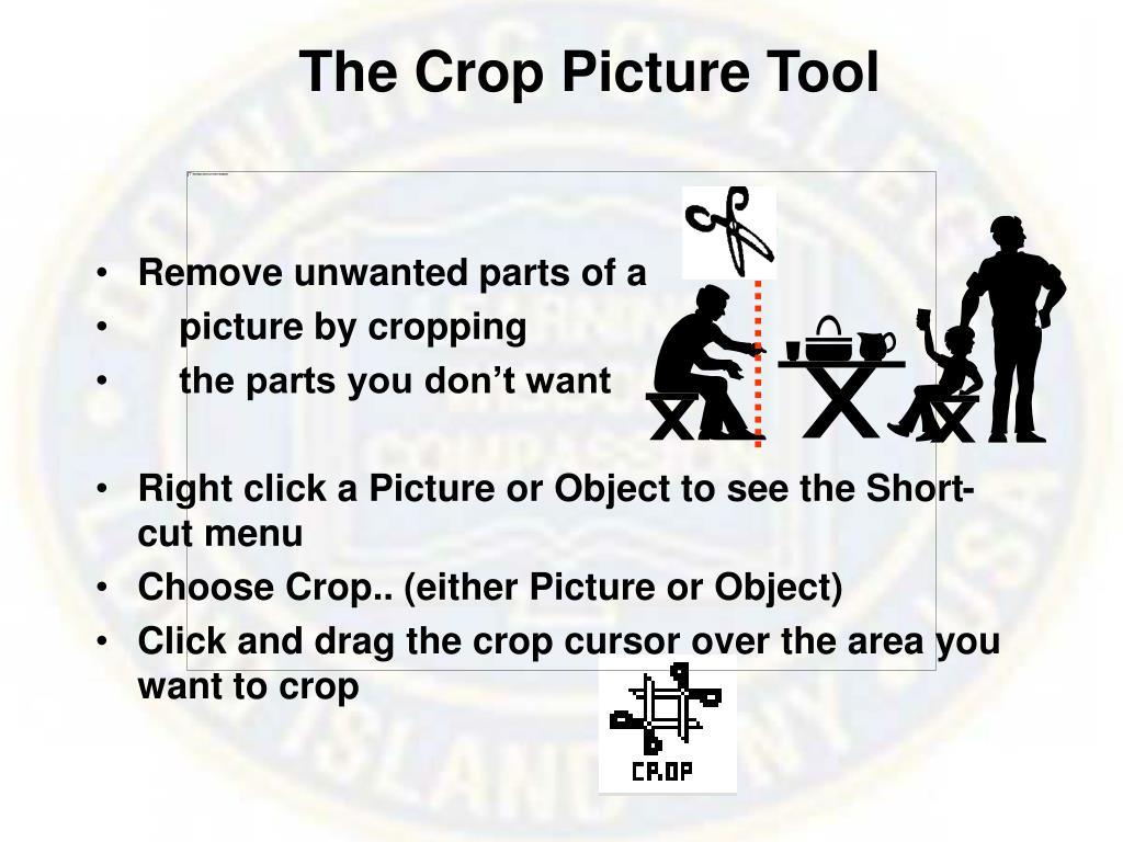 The Crop Picture Tool