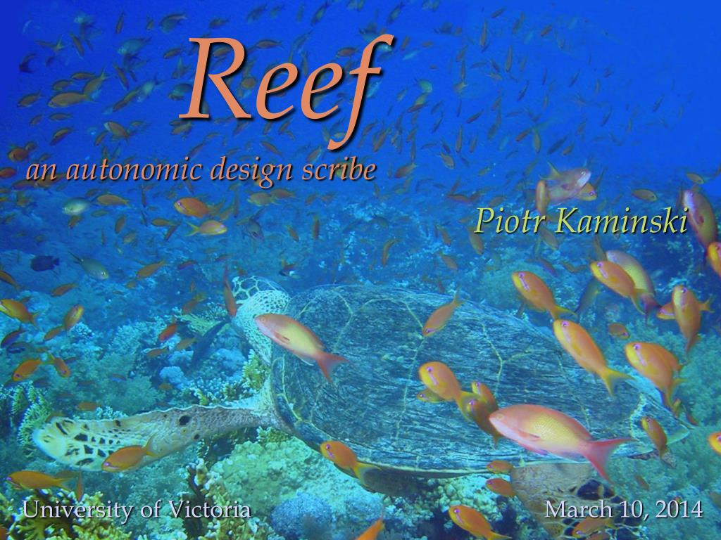 reef an autonomic design scribe l.