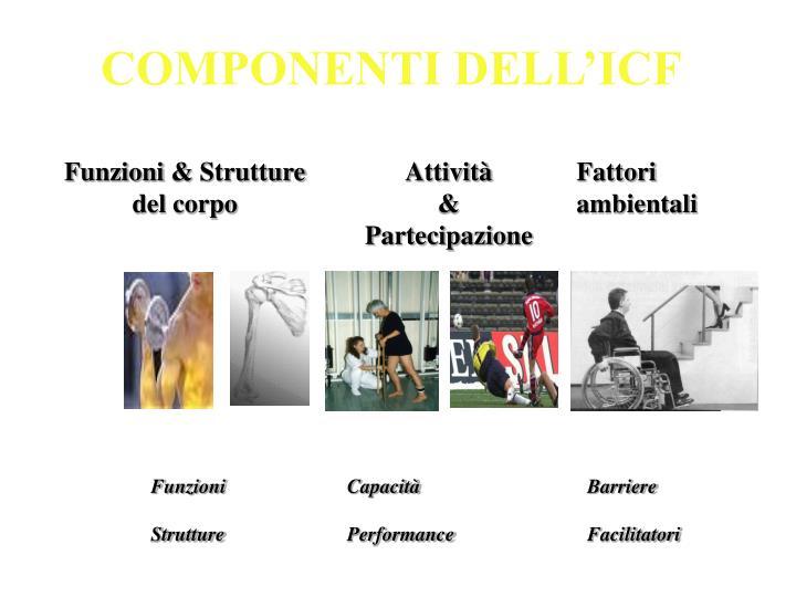 COMPONENTI DELL'ICF
