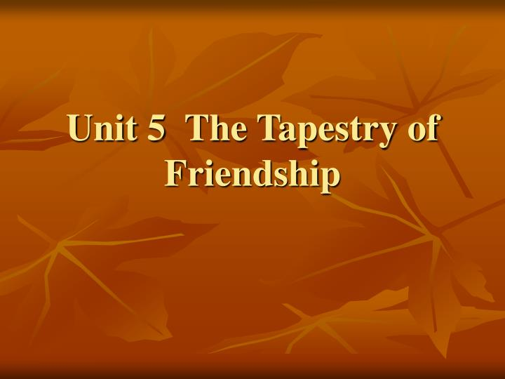 unit 5 the tapestry of friendship n.
