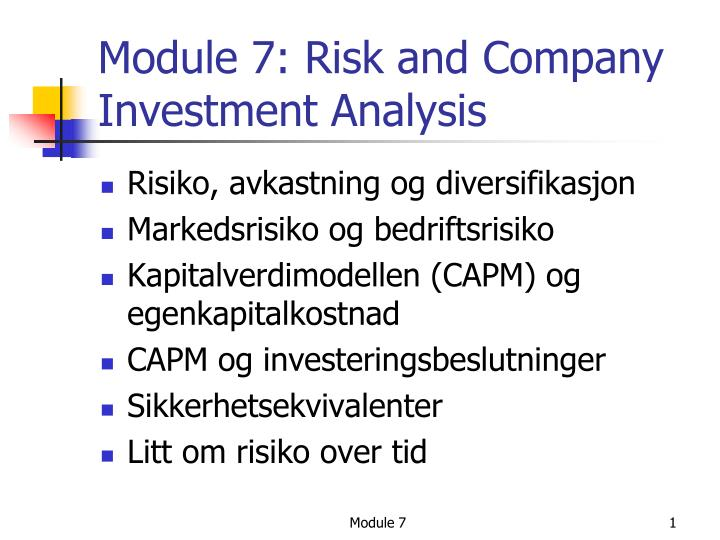 module 7 risk and company investment analysis n.
