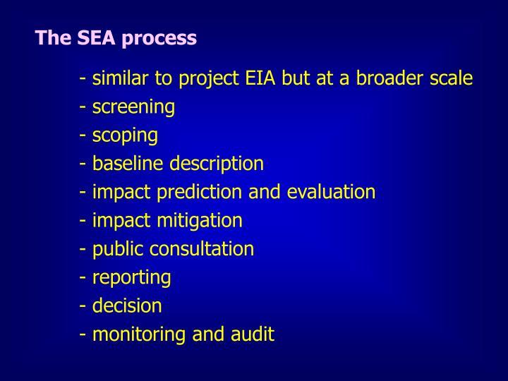 The SEA process
