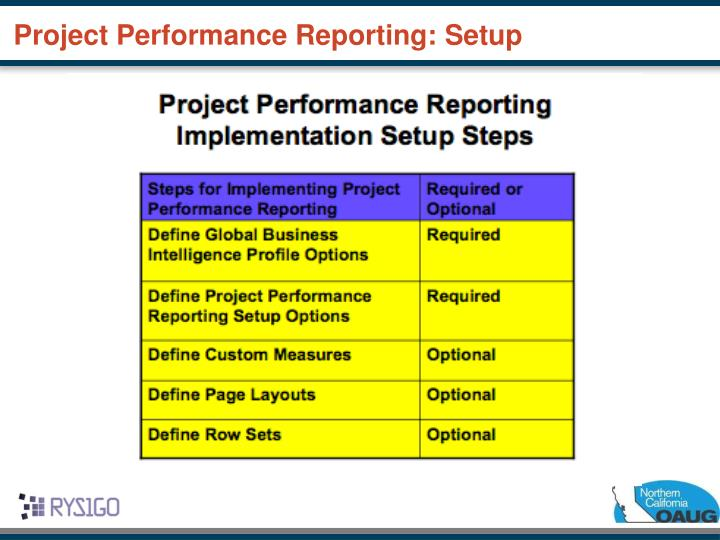 Project Performance Reporting: Setup