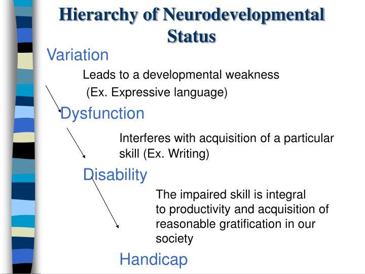 Hierarchy of Neurodevelopmental Status