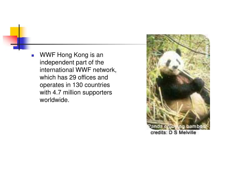WWF Hong Kong is an independent part of the international WWF network, which has 29 offices and operates in 130 countries with 4.7 million supporters worldwide.