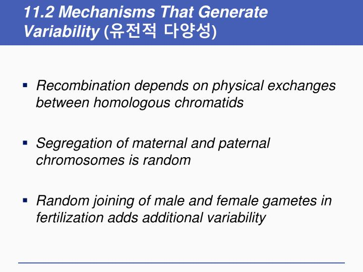11.2 Mechanisms That Generate Variability