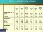 profit geographical segment
