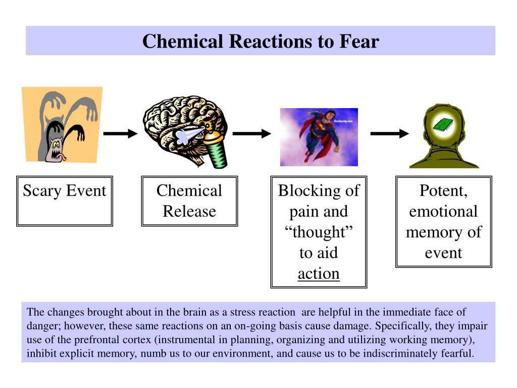 Chemical Reactions to Fear