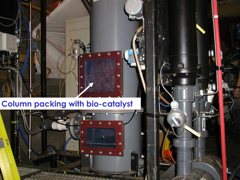 Column packing with bio-catalyst