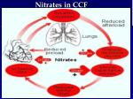nitrates in ccf