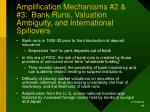 amplification mechanisms 2 3 bank runs valuation ambiguity and international spillovers