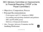 sec advisory committee on improvements to financial reporting cifir or the pozen committee