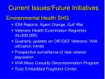 current issues future initiatives