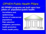 opheh public health pillars