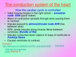 the conduction system of the heart how the cardiac cycle is controlled