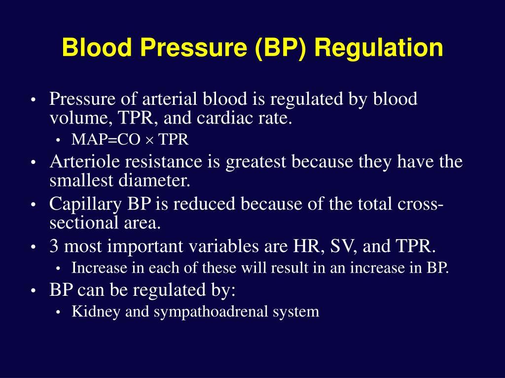 Blood Pressure (BP) Regulation