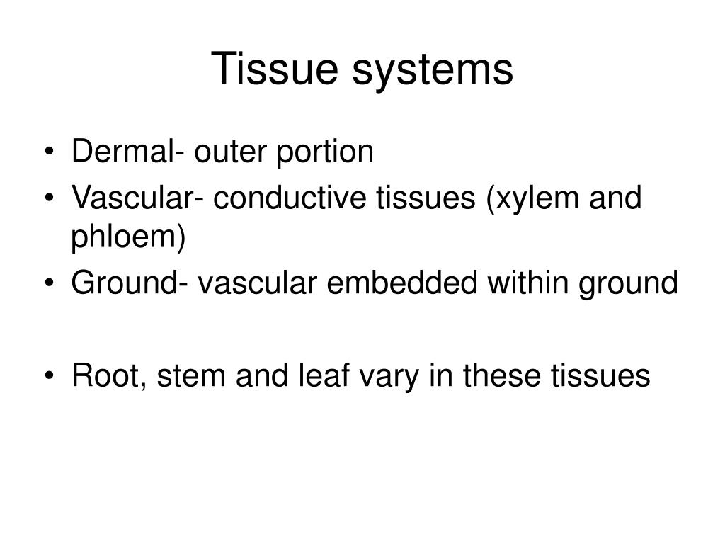 Tissue systems