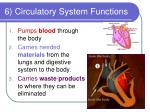 6 circulatory system functions