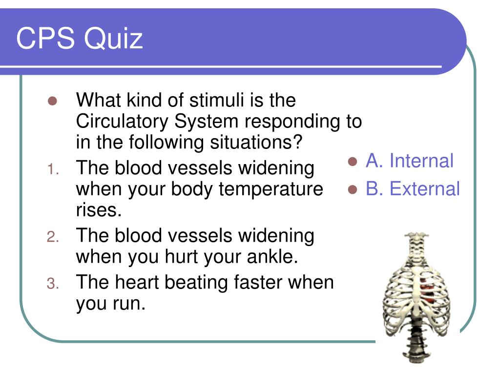What kind of stimuli is the Circulatory System responding to in the following situations?