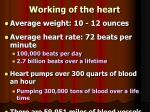 working of the heart