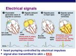 electrical signals
