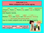 pass gum 3 1 b make subjects and verbs agree11