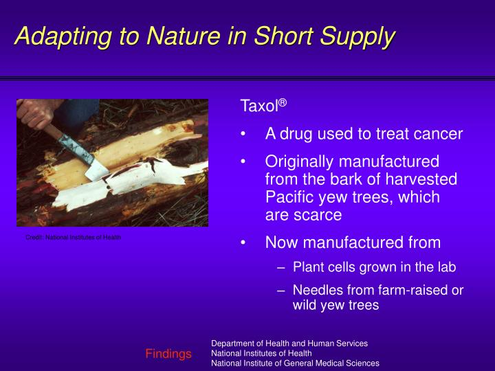 Adapting to Nature in Short Supply