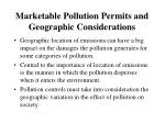 marketable pollution permits and geographic considerations