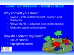 lawn conversion natural state