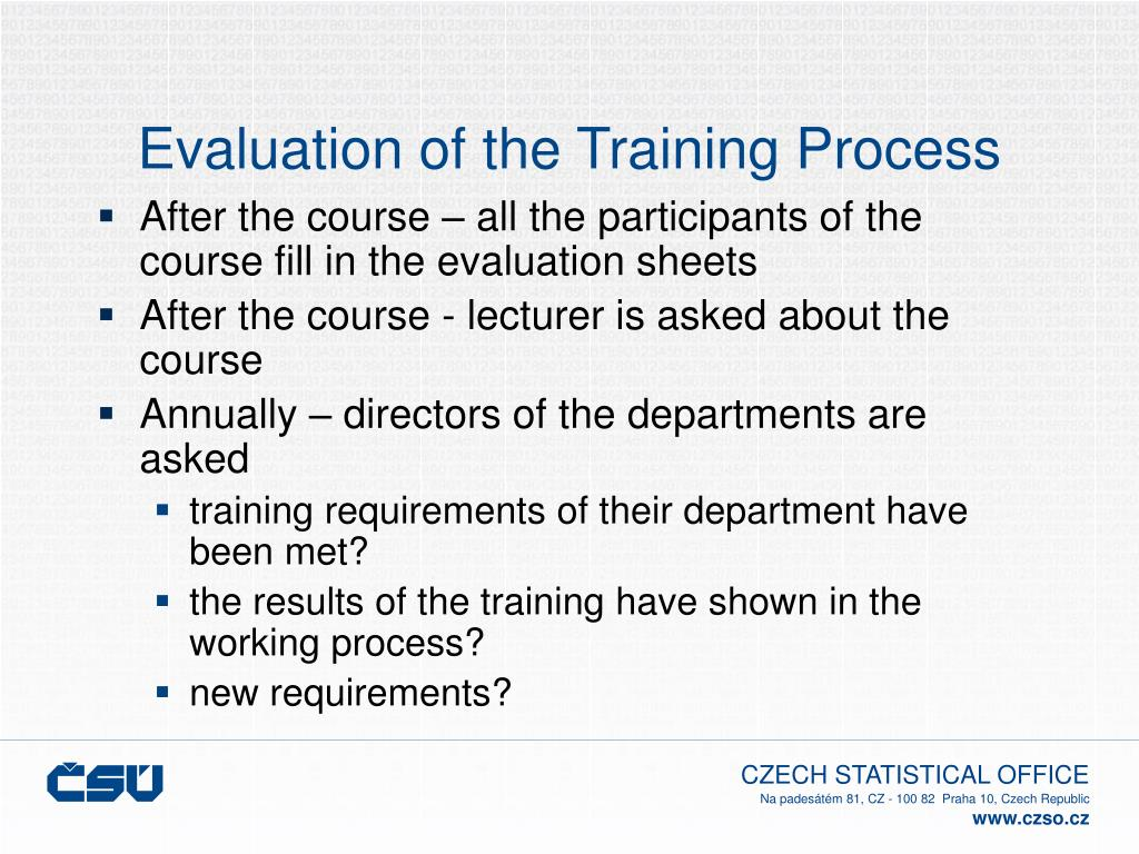 Evaluation of the Training Process