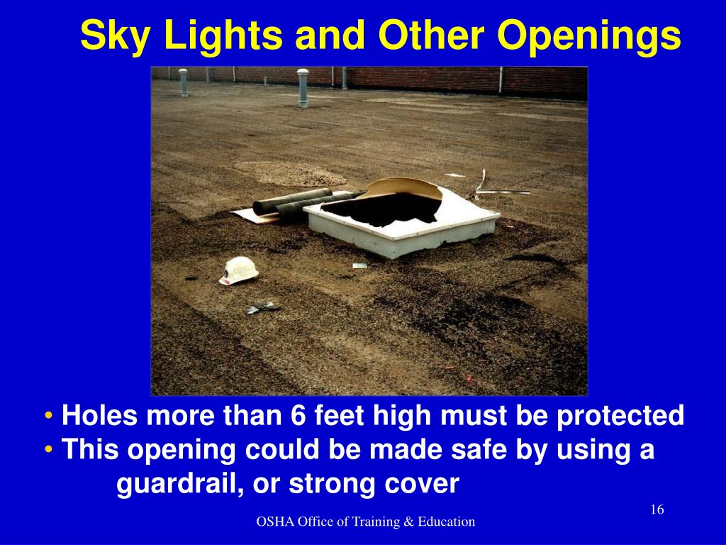 Sky Lights and Other Openings