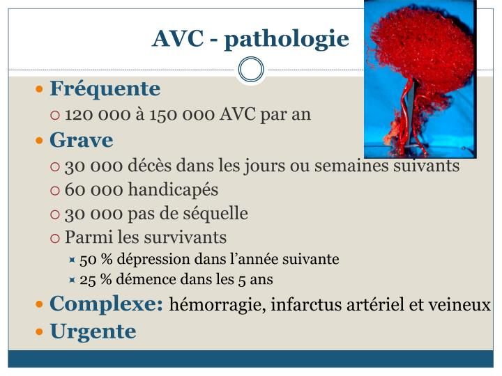 Avc pathologie
