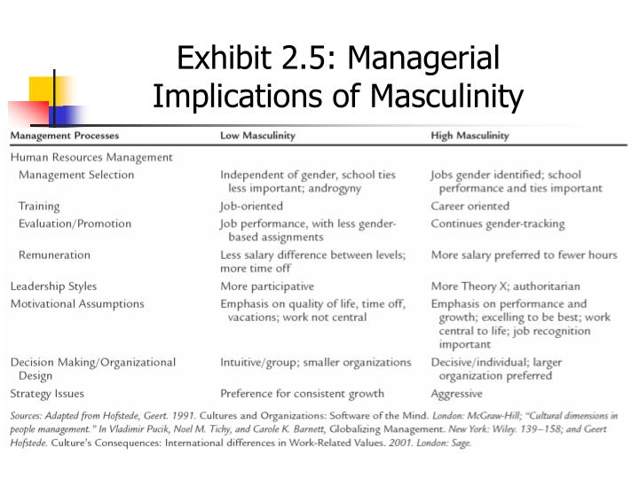 Exhibit 2.5: Managerial Implications of Masculinity