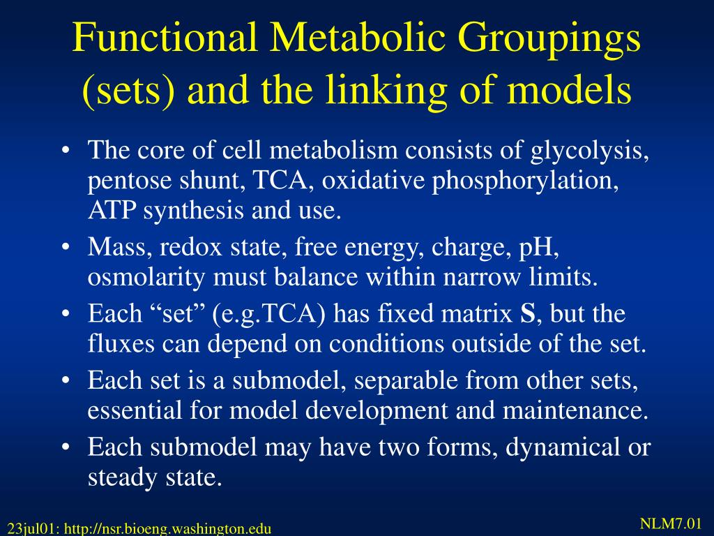 Functional Metabolic Groupings (sets) and the linking of models