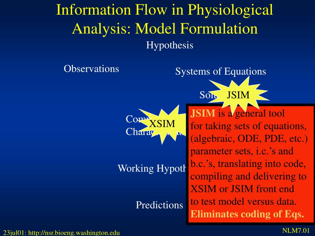 Information Flow in Physiological Analysis: Model Formulation