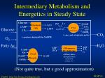 intermediary metabolism and energetics in steady state