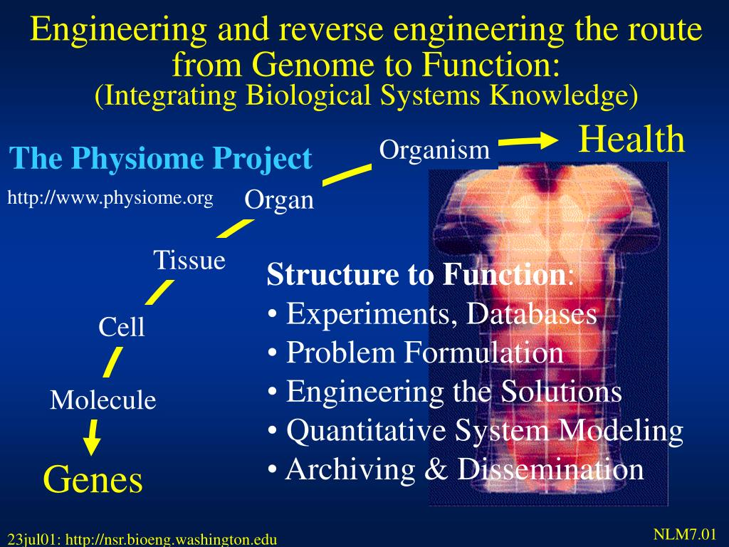 Engineering and reverse engineering the route from Genome to Function:
