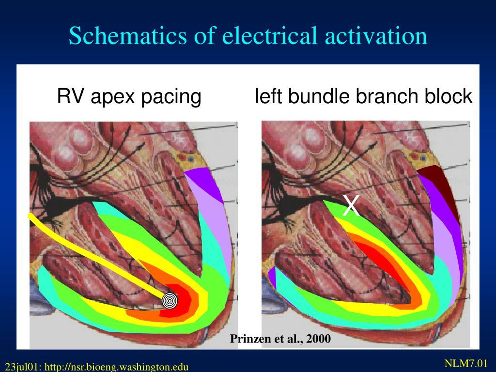 Schematics of electrical activation