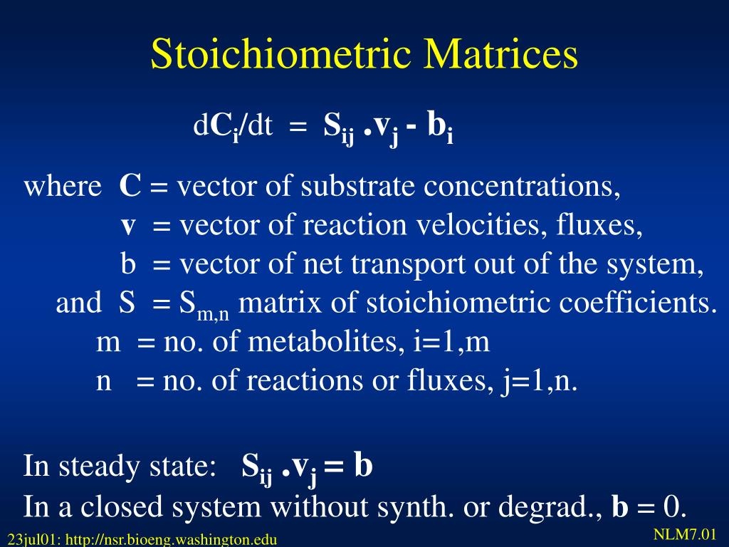 Stoichiometric Matrices