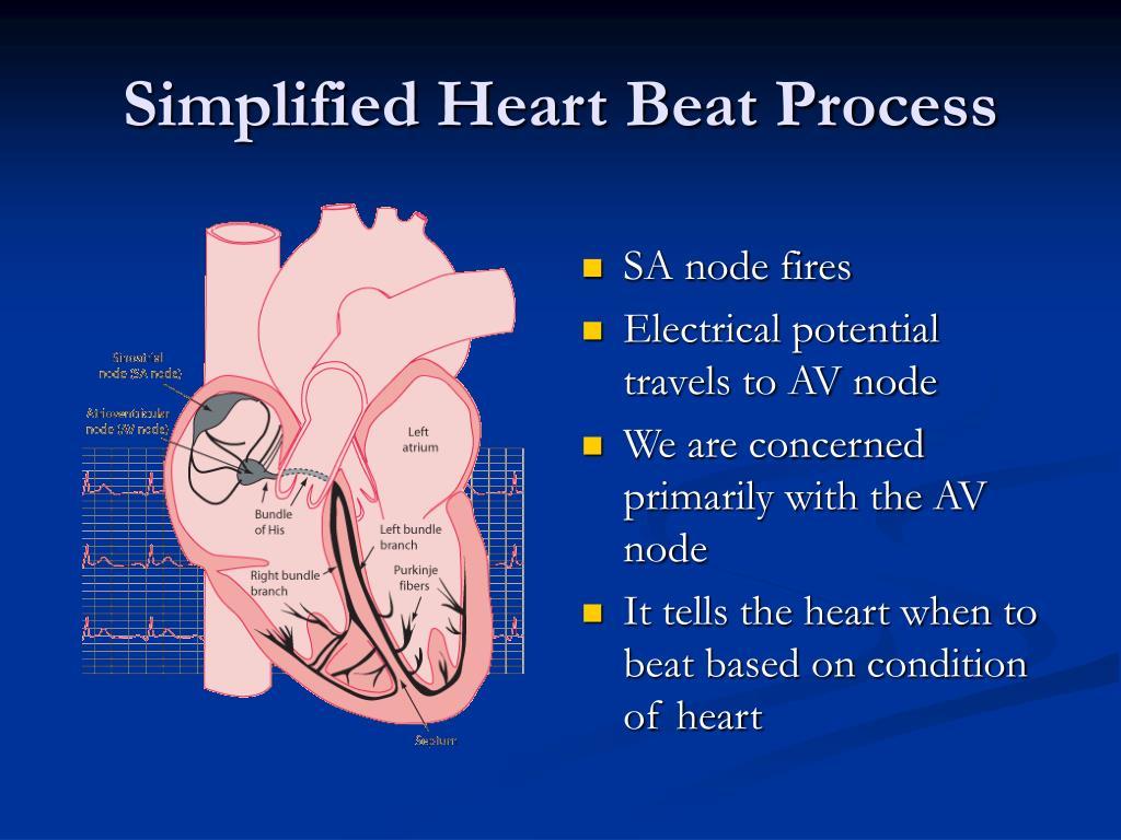 Simplified Heart Beat Process
