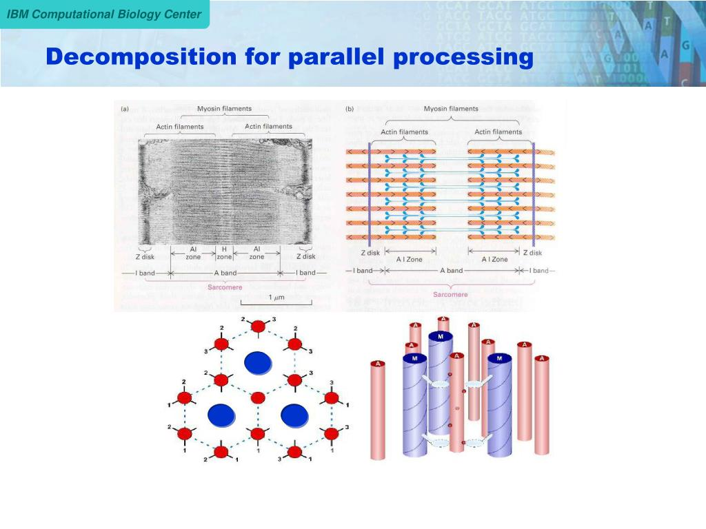 Decomposition for parallel processing