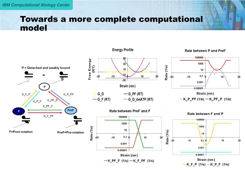 Towards a more complete computational model