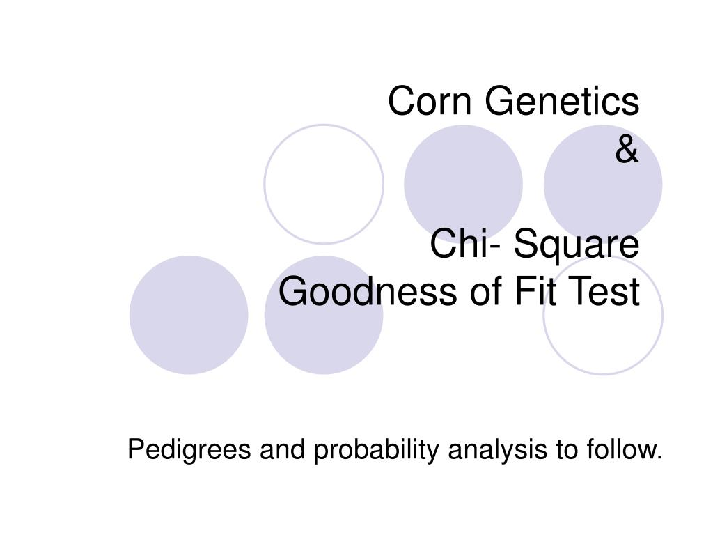 Ppt Corn Genetics Chi Square Goodness Of Fit Test Powerpoint