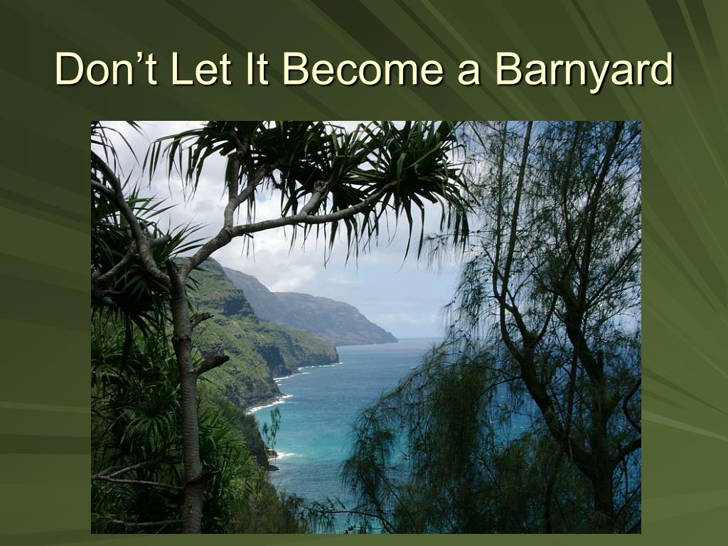 Don't Let It Become a Barnyard
