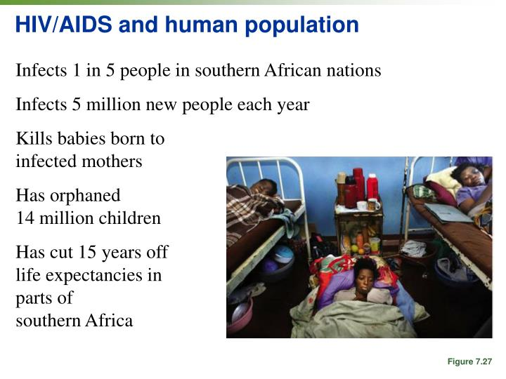"""aids infected orphans essay She warned that the growing numbers of aids orphans means that the only 200 hiv/aids-infected 0 thoughts to """" aids orphans in africa essay."""