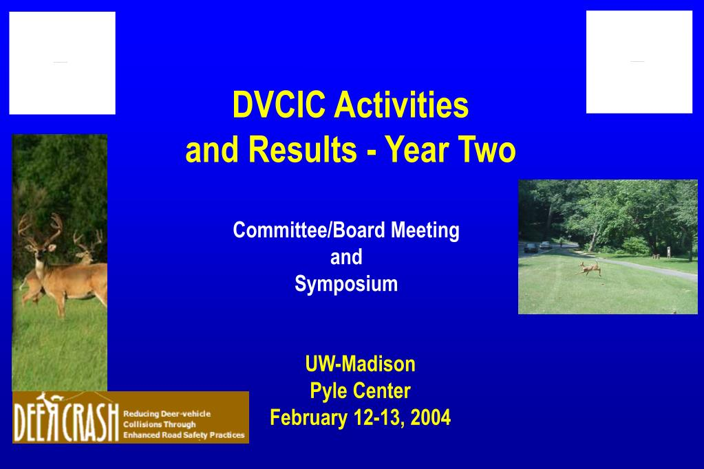 dvcic activities and results year two l.