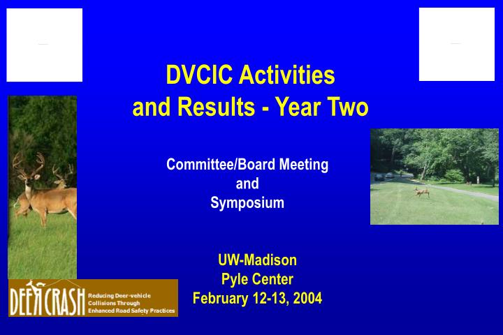 Dvcic activities and results year two